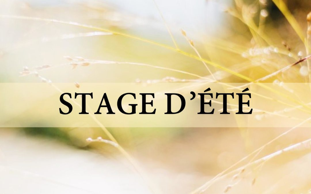 Stages d'été 2020 : Save the Date